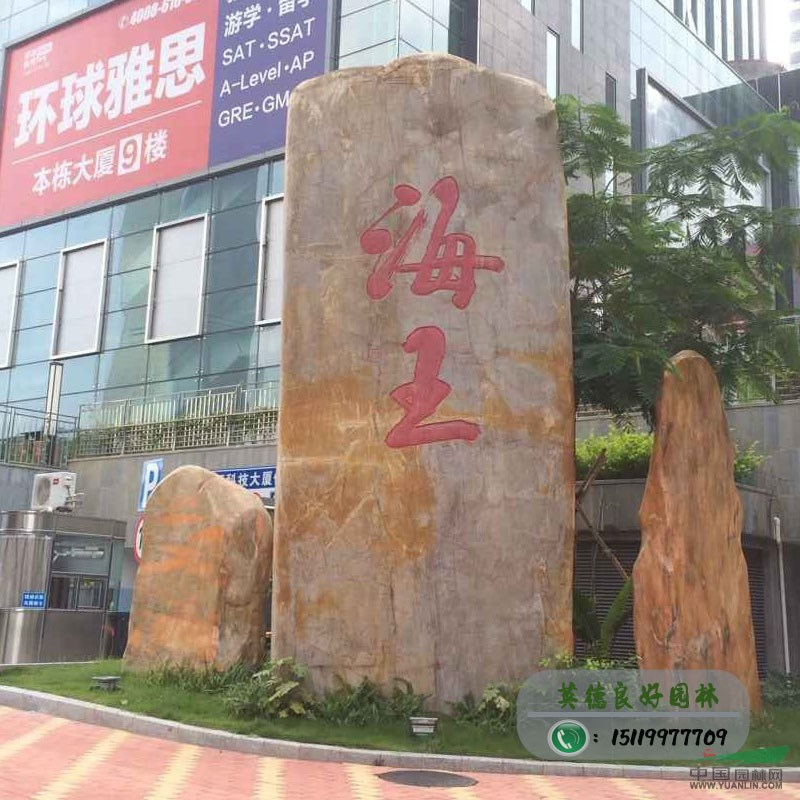 深圳海王集团