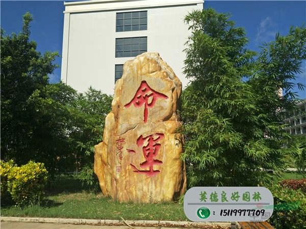 大型文化黄蜡石--命运